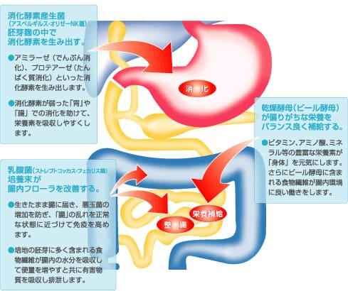 http://www.wakamoto-pharm.co.jp/health_si/labo/index.html